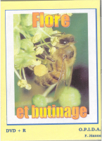 05BT12 Flore et butinage (DVD)